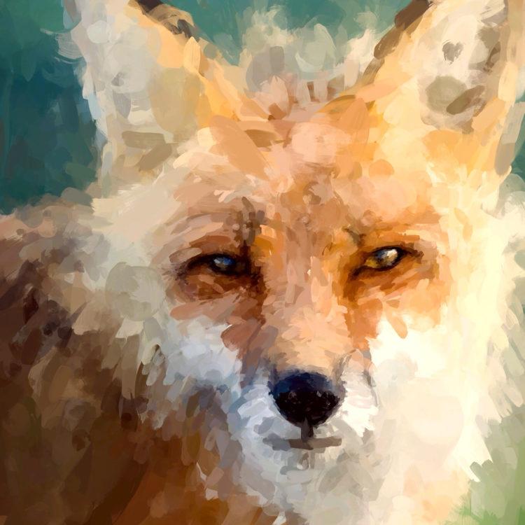brushes-paint